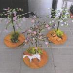 mini arbres